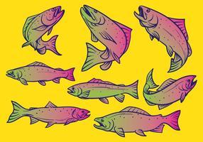 Ilustração do vetor dos peixes da truta