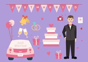 Pacote do vetor do casamento noivo