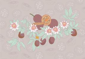 Vetor simples da fruta da paixão