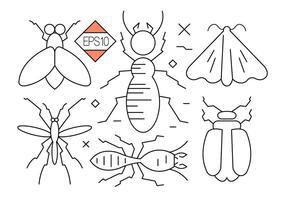 Ícones de vetores de insetos e insetos