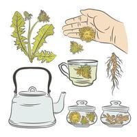 jogo de chá medicinal vetor
