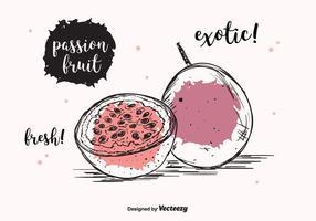 Fundo do vetor da fruta da paixão