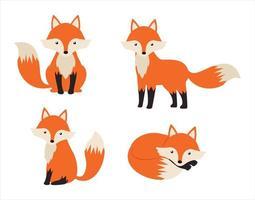 conjunto de desenho animado de raposa vetor