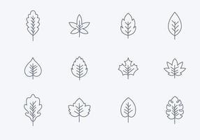 Ícones simples de folhas simples vetor