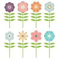 lindo pacote de flores coloridas
