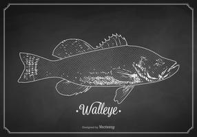 Vetor de walleye desenhado com giz grátis