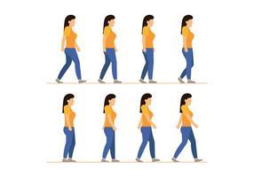 Vetores do ciclo da caminhada da mulher