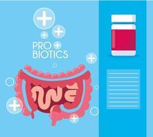 sistema digestivo com cápsulas de probióticos vetor