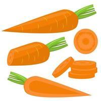 conjunto de cenoura fresca isolado vetor