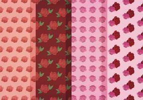 Padrões de rosas vetoriais vetor