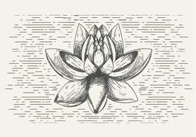 Ilustração da flor do vetor livre