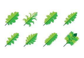 Livre Acanthus Leaf Icon Vector