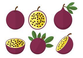 Vetor de fruta da paixão