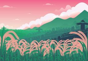 Ilustração gratuita do campo de arroz vetor