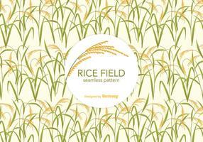 Padrão livre do vetor do campo do arroz