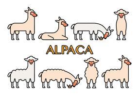 Ícones de vetor de alpaca