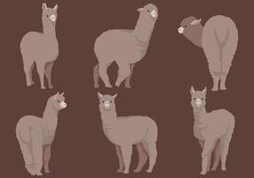 Vetor de ícones de alpaca grátis