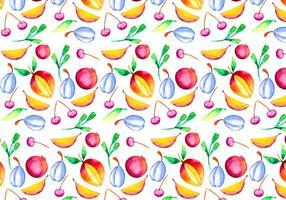 Ilustração da fruta da aguarela do vetor