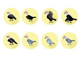 Ilustração vetorial grátis do Condor vetor