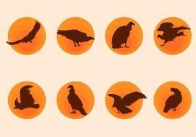 Vetor de condor de silhueta grátis