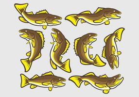 Ícones de Peixe de Walleye vetor