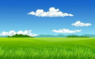 prado verde em dia ensolarado vetor