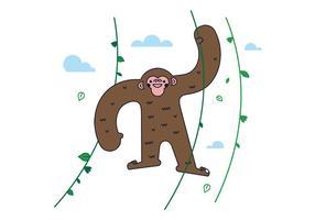 Vetor de macaco grátis