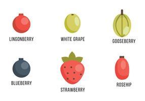 Seleção de bagas e uvas vetor