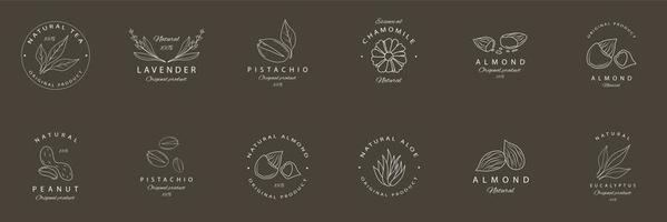 alimentos naturais brancos e emblemas de plantas vetor