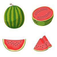 conjunto de melancia inteira e fatiada vetor