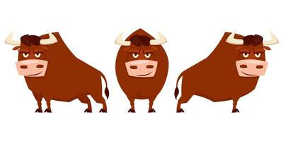 touro em diferentes poses vetor