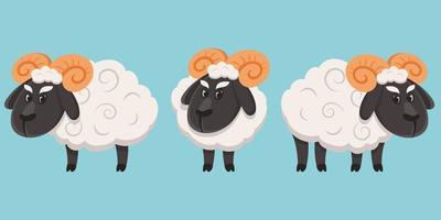 ovelha masculina em diferentes poses vetor