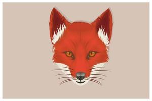 mão desenhada cabeça de raposa em vista frontal