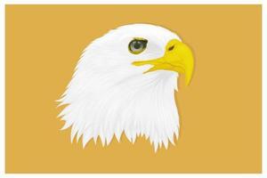 águia com olhar aguçado desenhando à mão vetor