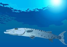 Barracuda Natação No Mar vetor