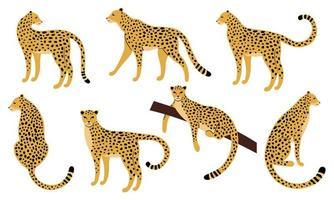 conjunto de desenhos desenhados à mão de leopardos vetor