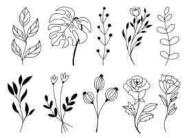 conjunto de elementos florais de doodle desenhado à mão