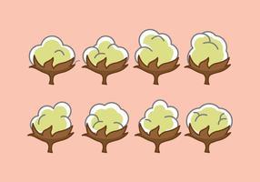 Pacote livre de vetores de flor de algodão