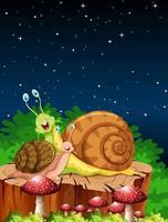 caracóis em um jardim à noite vetor