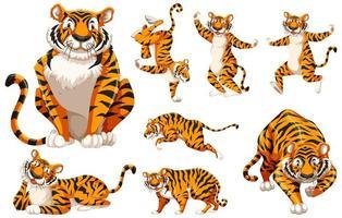 conjunto de tigre de personagem de desenho animado vetor