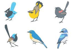 conjunto de design de pássaros pequenos vetor