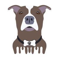desenho de cachorro marrom e branco vetor