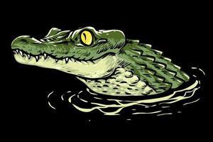 cabeça de crocodilo bebê