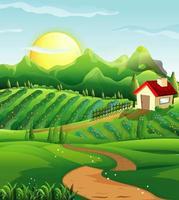 cena de fazenda na natureza com casa vetor