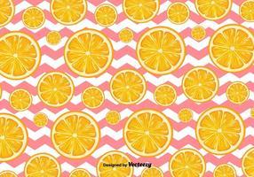 Fundo de laranja do vetor fatias