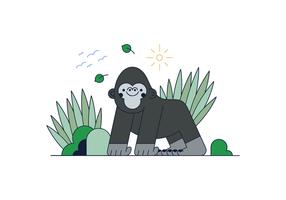 Livre Gorilla Vector