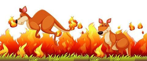 canguru escapar do incêndio florestal vetor