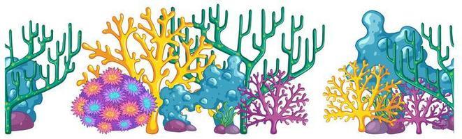 fundo de recife de coral