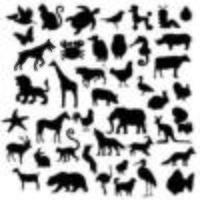 um conjunto de silhueta de animais vetor