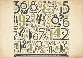 Vector de coleção de números verdes